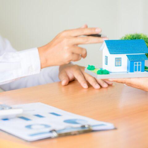 property consulation